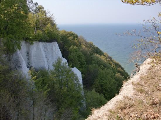 Kreidefelsen auf Rügen am Königsstuhl